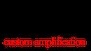 sarris custom amps logo